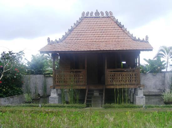 KajaNe Yangloni: Our bungalow