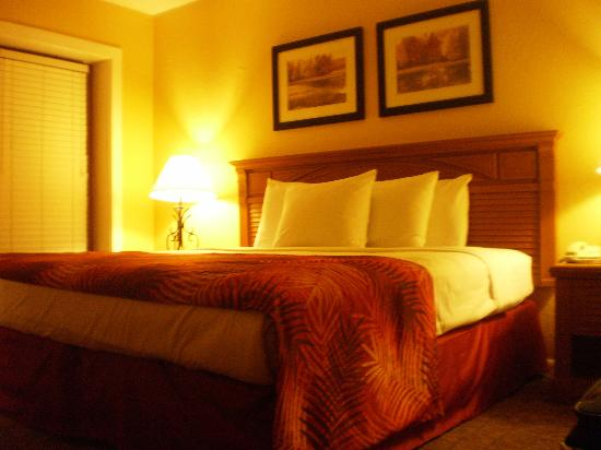 Legacy Vacation Resorts-Palm Coast: Room
