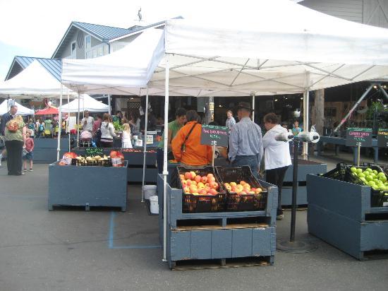 Farmers Market: Apricots!!!