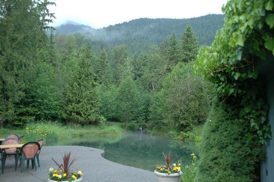 Alexander's Lodge: The Magic Pond