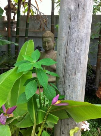 The Moon Boutique Hotel: Pure serenity in the garden