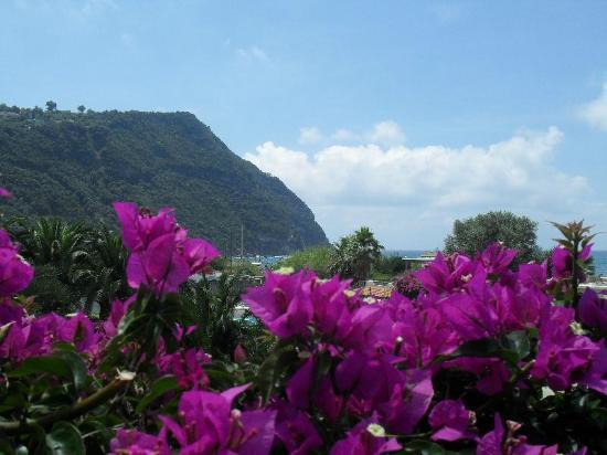 Semiramis Hotel de Charme Ischia : Dettaglio-Baia-di-Citara