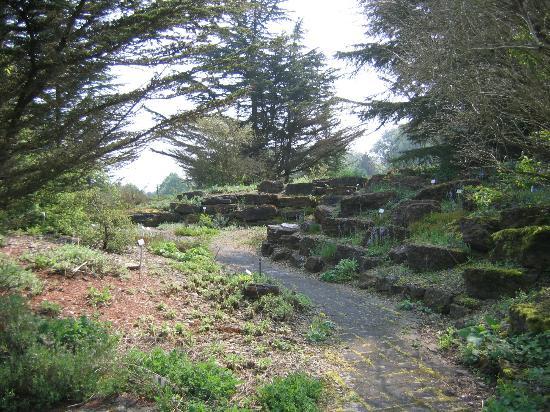 Botanischer Garten: Botanical Garden rock garden area