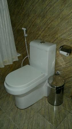 Jasmine Hotel Apartments: WC