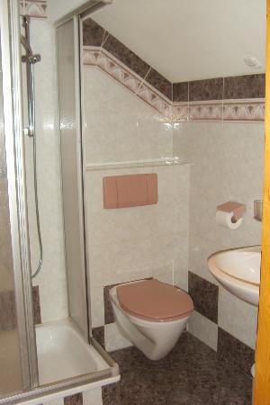 Haus Marienheim Pension: Dusche/WC
