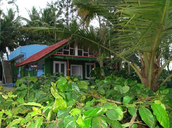 Bird Of Paradise Homestay Kushalnagar Indien Omd Men Och Prisj Mf Relse Tripadvisor