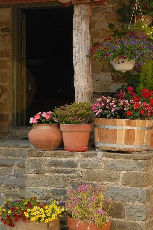 Papaevangelou Hotel: Flowers in the courtyard, July 2012