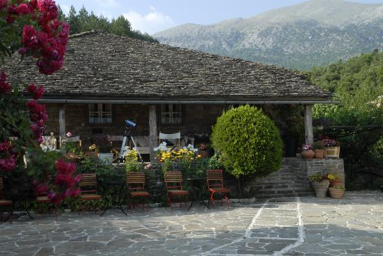 Papaevangelou Hotel: Courtyard with flowers, July 2012