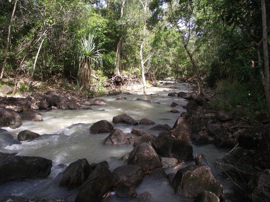 Proserpine, Australia: The stream - run-off from the falls