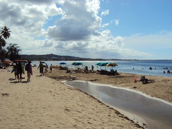 Terruno: View of Luquillo beach behind the Kiosks