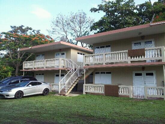 Sea Turtle Beach Apartments: Appartments