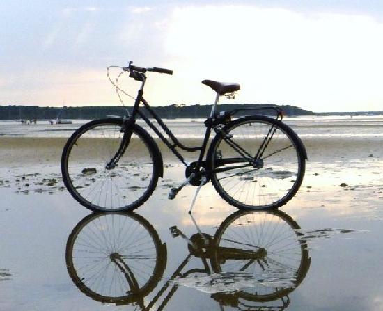 Liquid History Tours: British Bikes