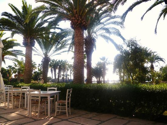 Pyla, Cyprus: Breakfast outside