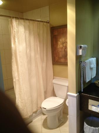 BEST WESTERN PLUS The Arden Park Hotel: view of the bathroom