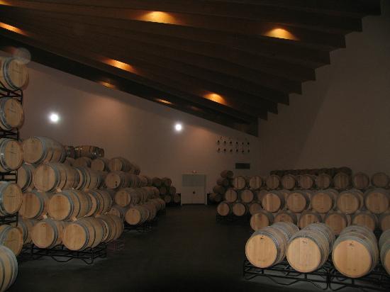 Bodegas Ysios: Ysios Wine Storage