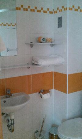 System Hotel Poznan: Toilet
