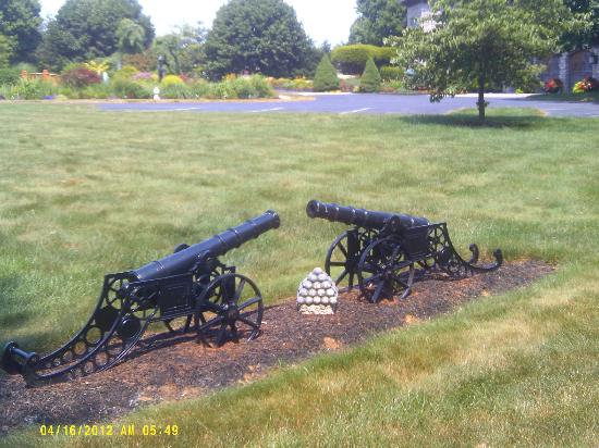 Twin Pine Manor Bed & Breakfast: My husband found these when he was walking on the grounds. So much to see!
