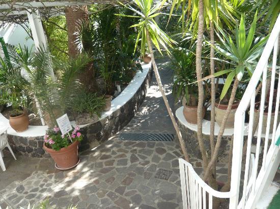 Villa Augustus: binnentuin