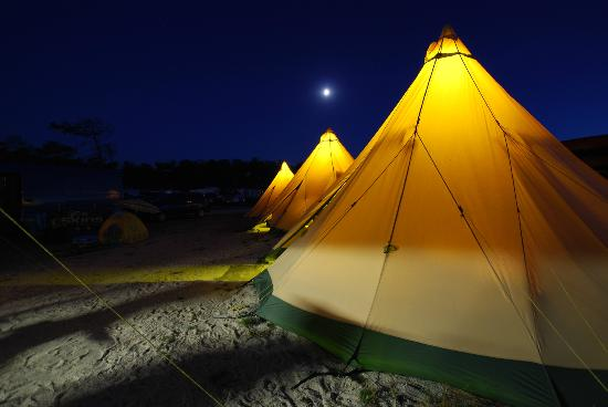 Feral Surf Tours: Tipi Glamping Accommodation