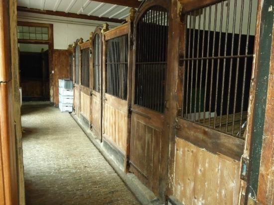 The Stables at Henham Park: stables as they were