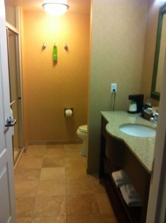Hampton Inn Tremonton: room 221