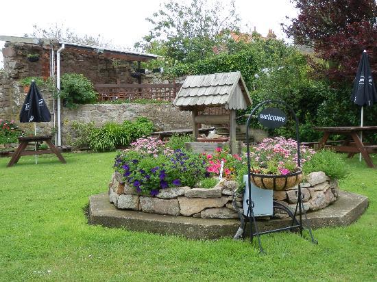 Bumps Bar & Bistro: Bumps Eating House garden