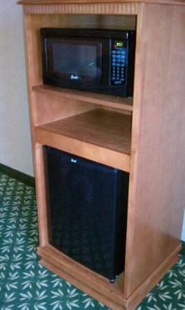 Hampton Inn & Suites Walla Walla : microwave and refrigerator