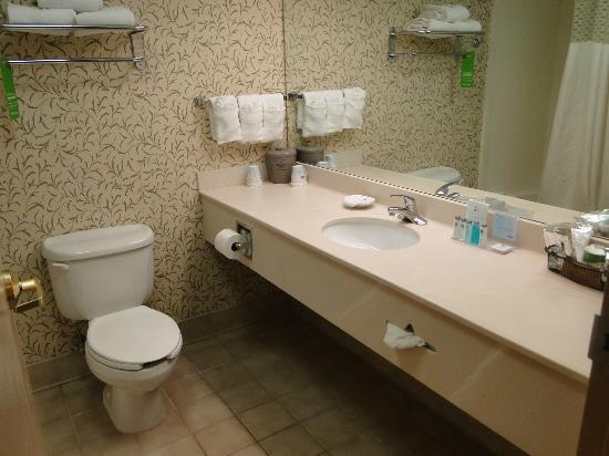 Hampton Inn Hartford / Airport: Ultra clean bathroom with good vanity area.