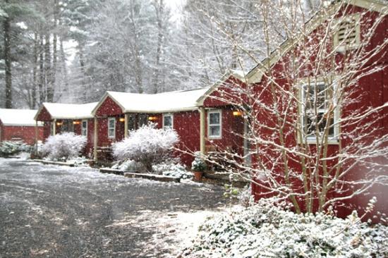 Phoenicia Lodge : Winter Snow Motel
