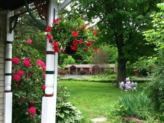Phoenicia Lodge: Spring Blooms