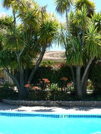 Country Garden Inns: One side of pool with trees and flowers