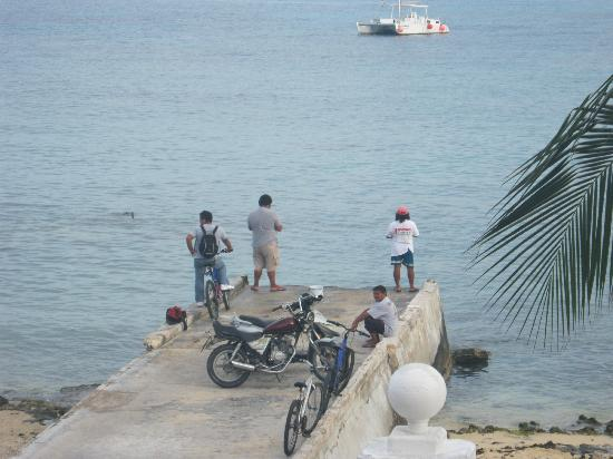 Suites Bahia: These guys come here and fish every morning.