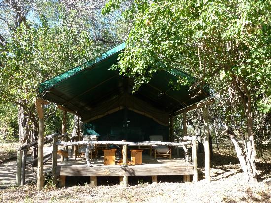 Camp Xakanaxa: Our tent nr 11