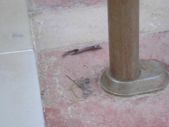 Hotel Minay: unclean pool area 