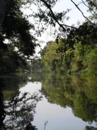 Madewood Plantation House : Bayou Lafourche