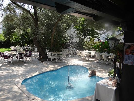 Hotel Oliva: Sitting below olive trees