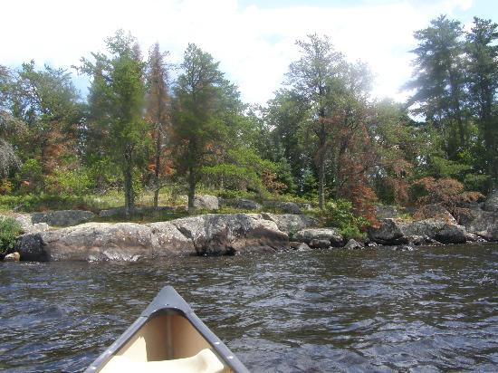 Inverness Falls Resort: Krragg Island - Easy canoe trip 1/2 hour
