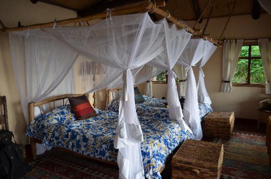 Virunga Lodge: Banda