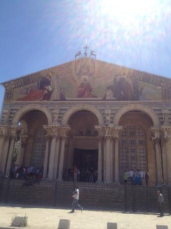 Abboud Tours: CHURCH OF THE AGONY : GETHSEMANE