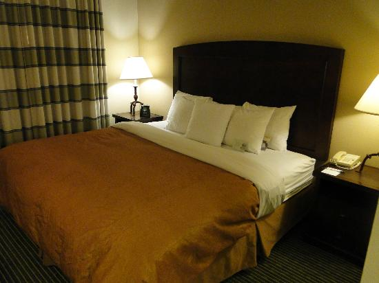 Homewood Suites by Hilton Minneapolis - Mall of America: Comfortable King Bed