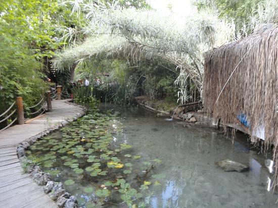 Akkaya Garden Restaurant: Akkaya Gardens