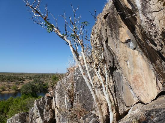 Savute Safari Lodge: Rock paintings