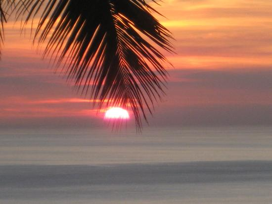 Coconut Grove : Sunset at Coco