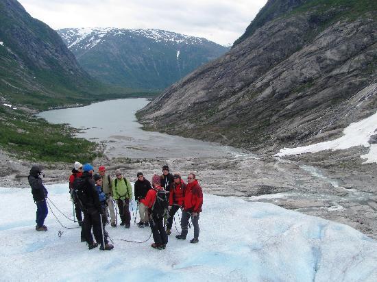 Nigardsbreen Glacier: Glacier Hike