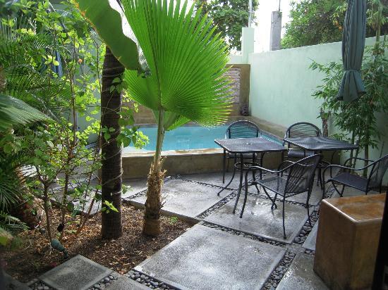 Casa Verde Inn: giardinetto&piscina