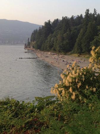 Fairmont Pacific Rim: City beach