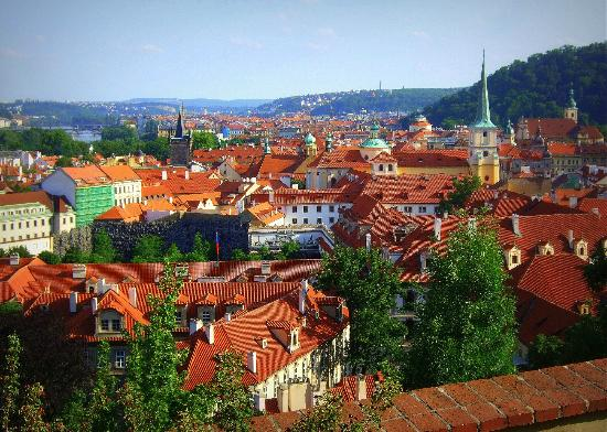 Personal Prague Guide - Private Tours : The city from the vineyards below Prague castle.
