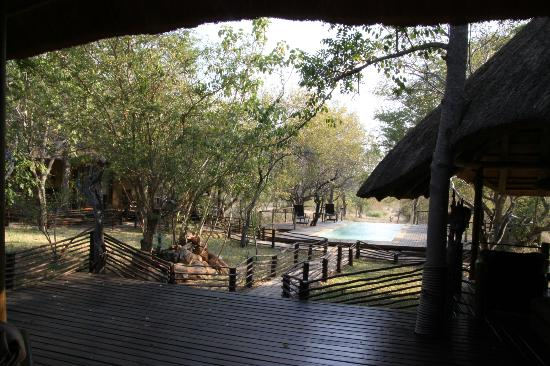 Toro Yaka Bush Lodge: quiet en peaceful staying