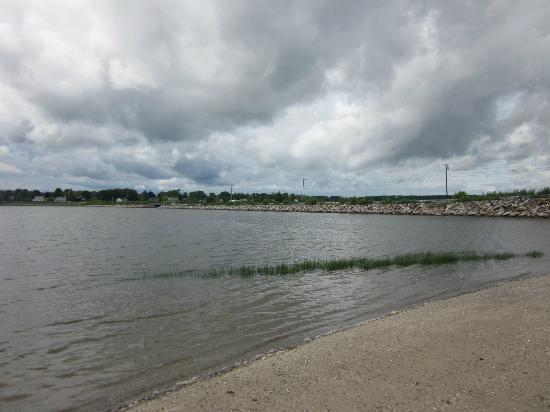 Mackworth Island: Shoreline view
