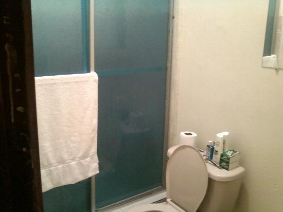 Hotel Paseo Delfin : The Bathroom